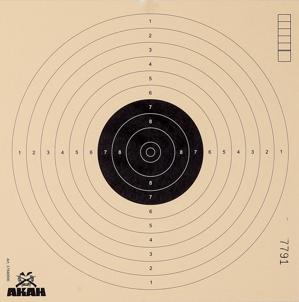 250x Scheibe 17x17 Luftpistole